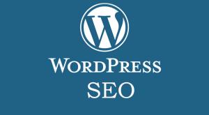 Online Seller UK - Wordpress SEO Training Swansea
